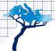 Monbailliu & Associés, Consultants en Environnement